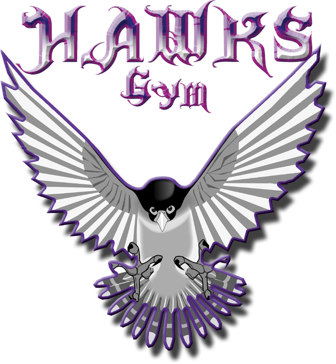 Hawk's Gym Las Vegas Logo